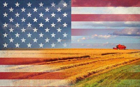 美国农产品暴涨