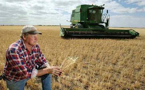美国农产品震幅加大